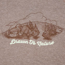 Meridian Line - Drawn to Nature (featured)