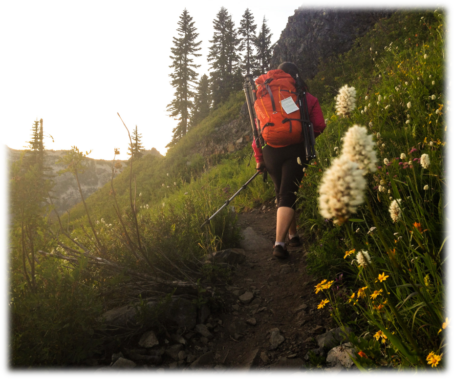 hiking in the pacific northwest dehydrating backcountry food for adventures